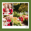Green Border Collage copy