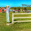 Welcome to Homestead Farms a true fall favorite for DMV residents - for a day in the country spend on a working farm in the Ag Reserve of Montgomery County.