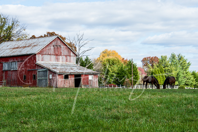 Red Barn in North Potomac on Jones Lane Road