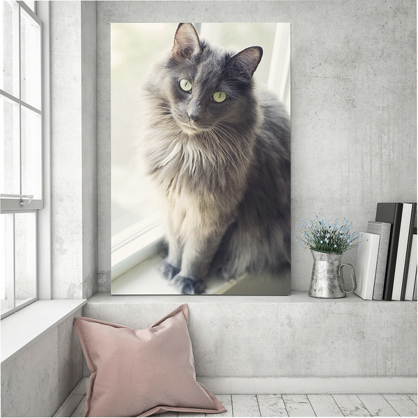 large custom canvas of grey cat in grey pink chic room