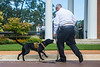 K-9 Arson dogs added to team