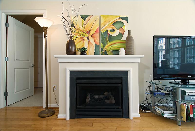 Fireplace Wide