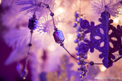 matty_20121201_14313
