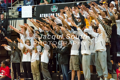 11/20/2016 - Damascus fans at the 3A Championship Volleyball game between Atholton and Damascus, ©2016 Jacqui South Photography