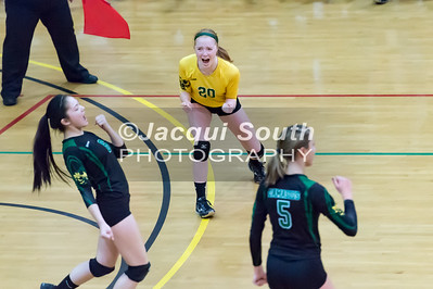 11/20/2016 - Libero Sarah Bowers (20) and teammates Cecilia Groves (6) and Kaylen Bernota (5) celebrate a point during the 3A Championship Volleyball game, ©2016 Jacqui South Photography