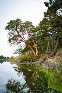 Crandberry Lake