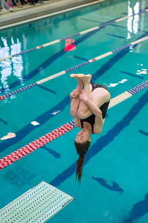 1/20/2018 - Ella Jacobs dives a forward 1-1/2 somersault dive, Blake v Magruder Swim & Dive, ©2018 Jacqui South Photography