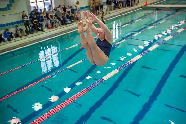 1/20/2018 - Alexa Young (Magruder) dives a back dive,  Blake v Magruder Swim & Dive, ©2018 Jacqui South Photography