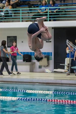 1/20/2018 - Carson Powell (Magruder) dives a 1-1/2 somersault, Blake v Magruder Swim & Dive, ©2018 Jacqui South Photography