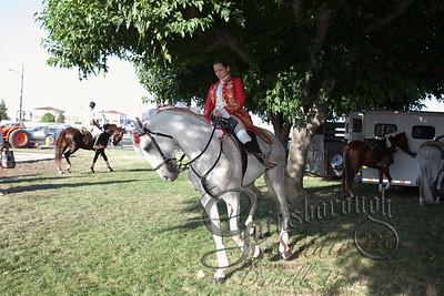 Bullfights_138