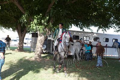 Bullfights_137