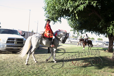 Bullfights_142