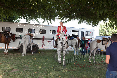 Bullfights_140