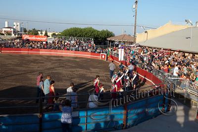 Bullfights_161
