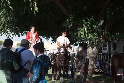 Bullfights_136