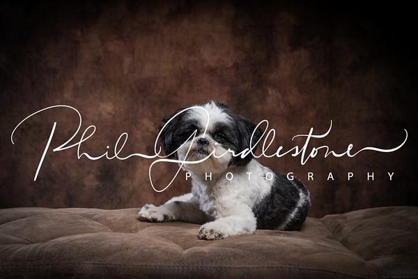 20190402 - Georgina,Reggie - Full Res Viewing
