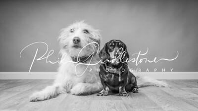 Phil Girdlestone Photography