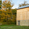 Fall colours on maple to the east of the barn. Taken after barn boards replaced.