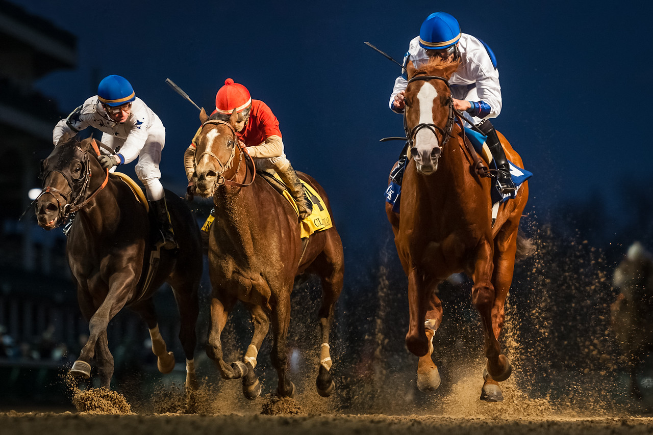 Shackleford (Forestry), Jesus Castanon up, beats Take Charge Indy (outside) and Bourbon Courage (red cap) to win the Clark Handicap at Churchill Downs on 11.23.12. Dale Romans trainer, Michael Lauffer and Bill Cubbedge owners.