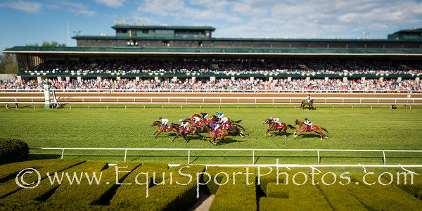 Miss Temple City (#2, Temple City) wins the Makers 46 Mile at Keeneland on 4.15.2016. Dayden Van Dyke up, Graham Motion trainer, Sagamore Farm, Allen Rosenblum and The Club Racing owners.