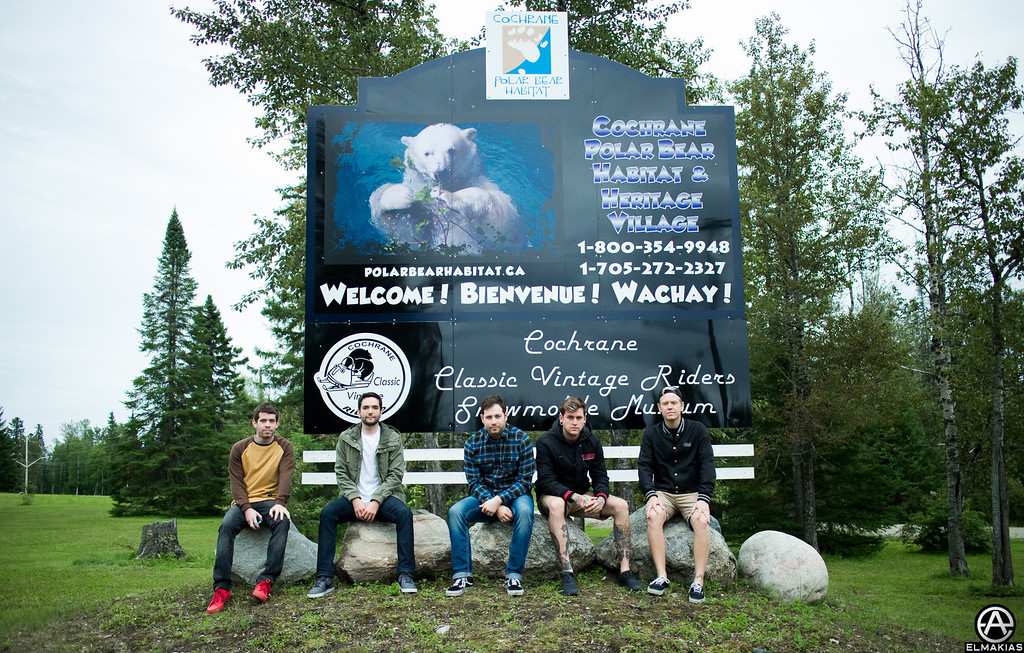 A Day To Remember at the Polar Bear Habitat