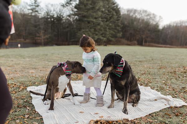 Abbie_Dogs-10