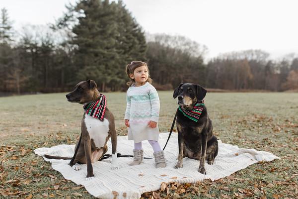 Abbie_Dogs-12