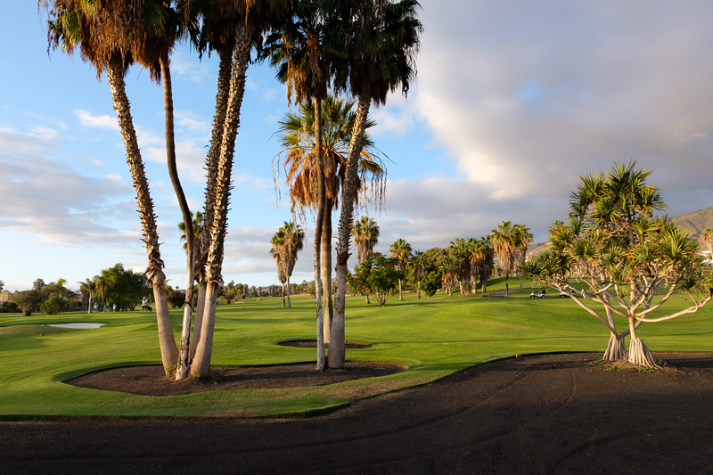 Golf Adeje_20191116_8578