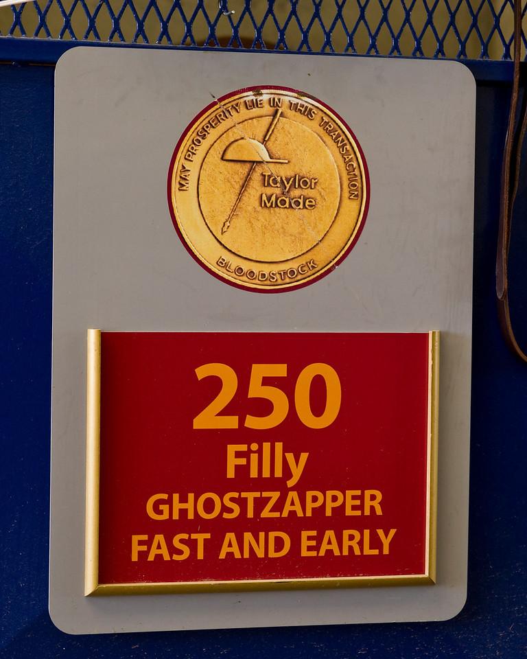 Ghostzapper