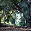 Balboa Park near 163 Freeway