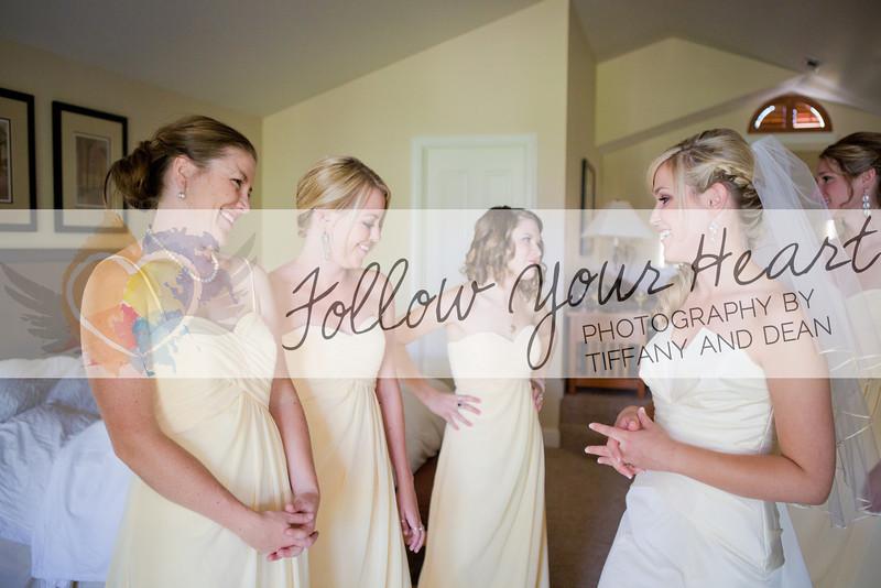 Alyssa & Larry Wedding Highlights-17