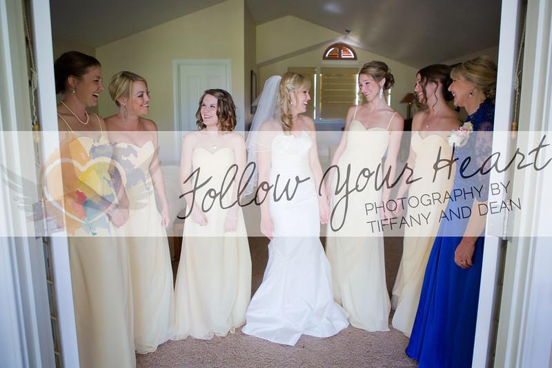 Alyssa & Larry Wedding Highlights-15