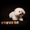 2011-Drexler, Cherie-Sep30-10608
