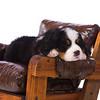 2011-Pearson, Mary-Oct22-11707