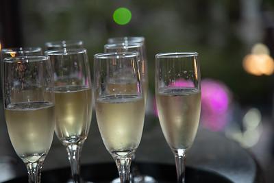 Celebrate-29