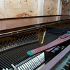 Pianola. 10th November 2013