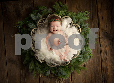 ChristmasNewbornBackdrop-6
