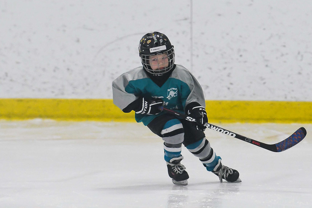 Finley-3389-Timbits