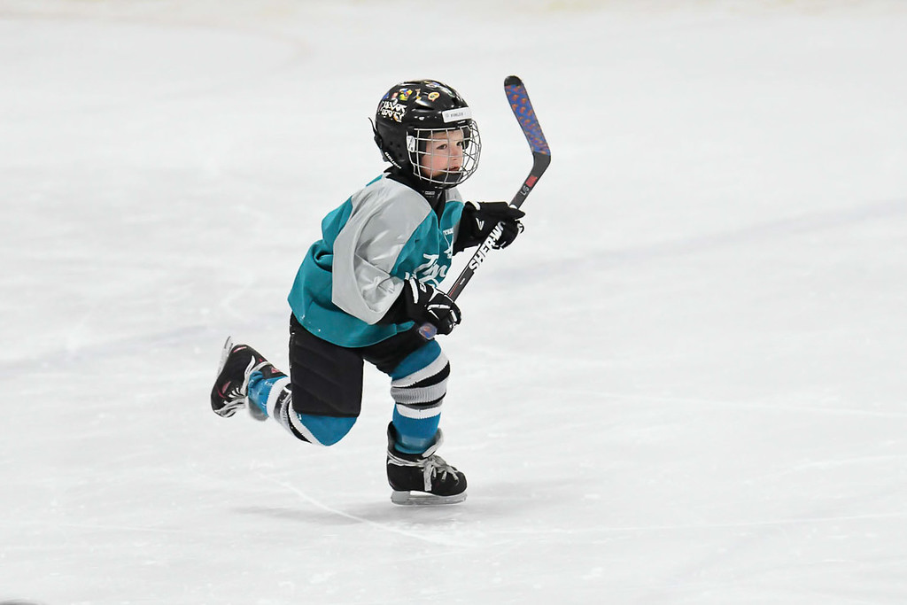 Finley-3885-Timbits