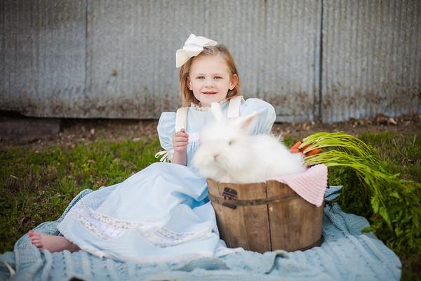Ashmore Bunny