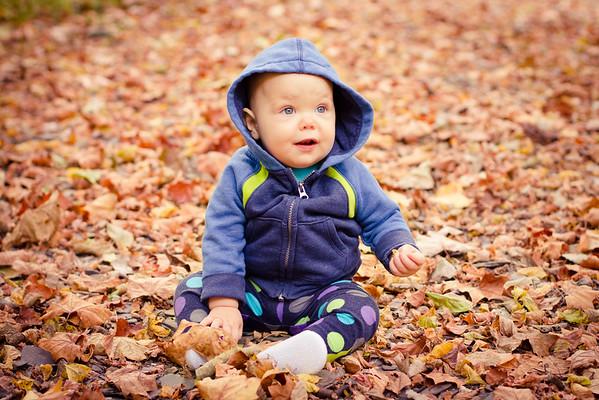 Azalea in the Leaves