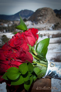 20121229 Justin_Lindsey Wedding-341_WEB