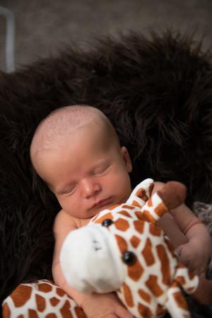Baby Milo-33