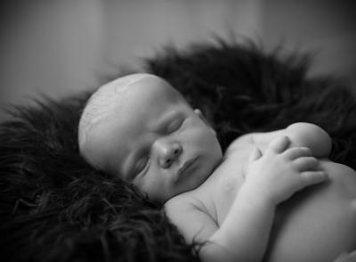 Baby Milo-29