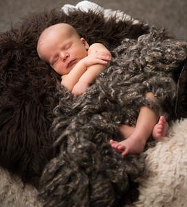 Baby Milo-28