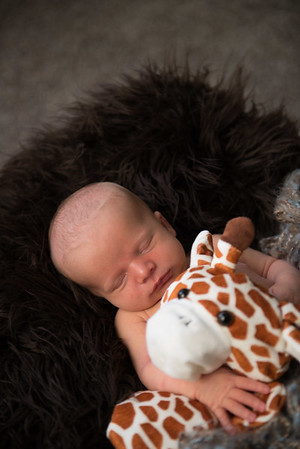 Baby Milo-32