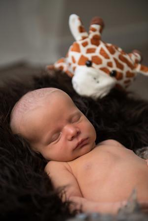 Baby Milo-35