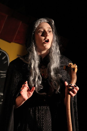Black Box Players- Into The Woods