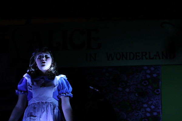 Cast B- Alice in Wonderland