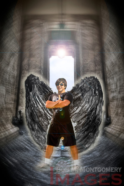 wings 7-Edit
